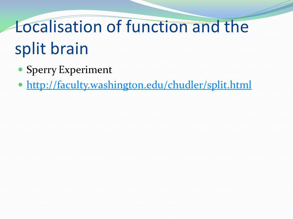 Localisation of function and the split brain