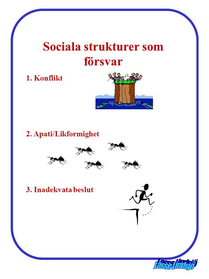 Sociala strukturer som försvar