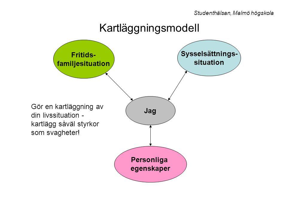 Kartläggningsmodell Fritids- Sysselsättnings- familjesituation