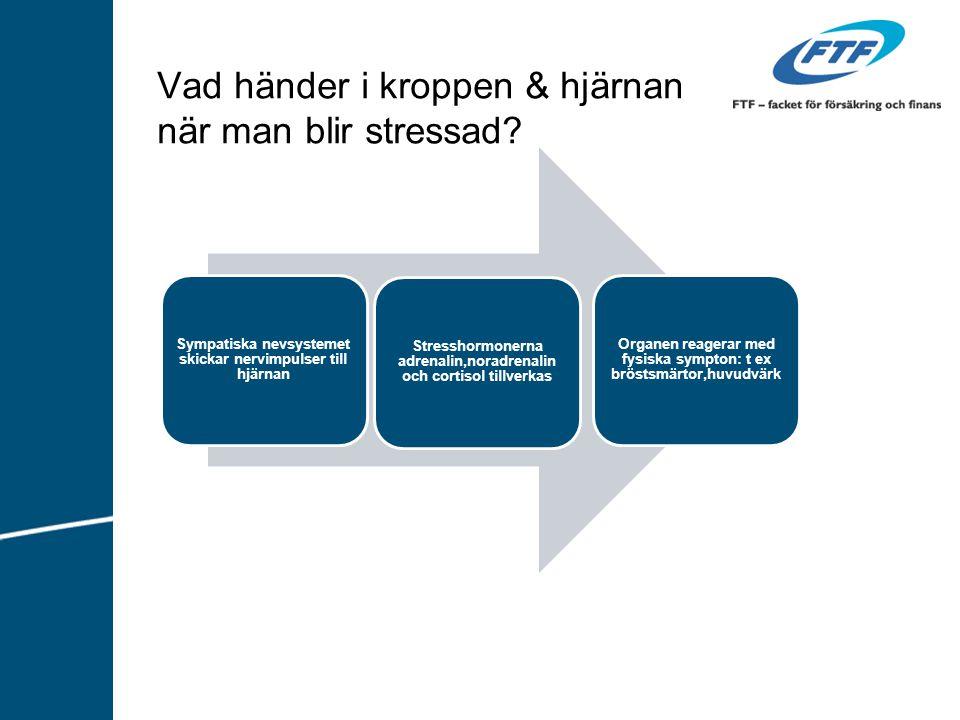 Vad händer i kroppen & hjärnan när man blir stressad
