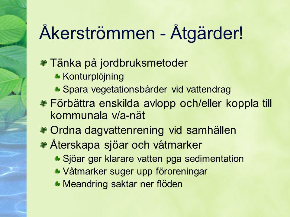 Åkerströmmen - Åtgärder!