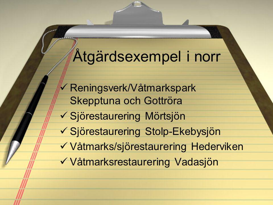 Åtgärdsexempel i norr Reningsverk/Våtmarkspark Skepptuna och Gottröra