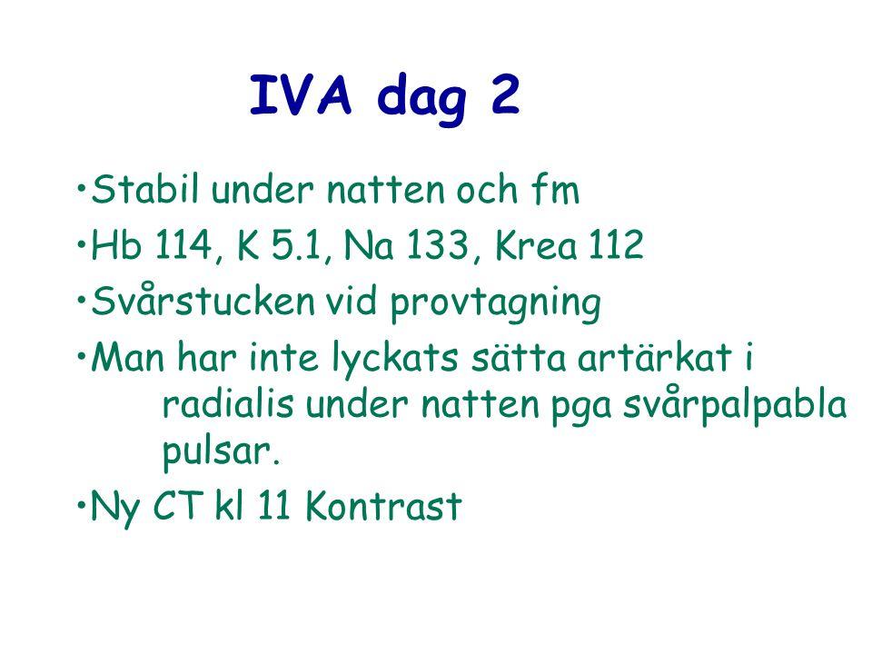IVA dag 2 Stabil under natten och fm Hb 114, K 5.1, Na 133, Krea 112