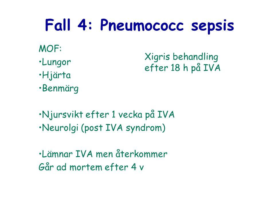 Fall 4: Pneumococc sepsis