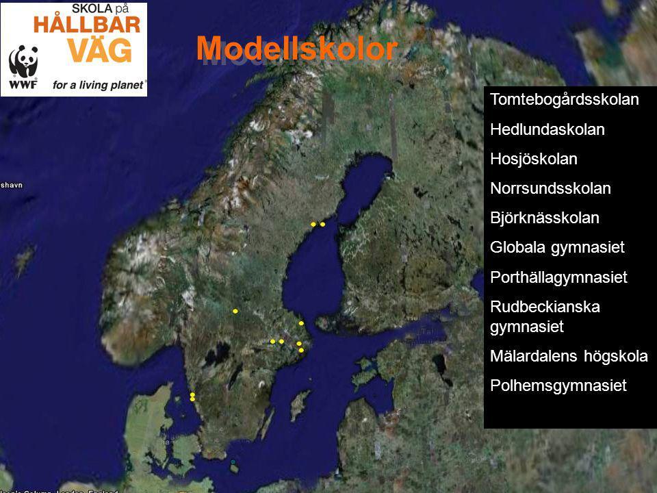 Modellskolor Tomtebogårdsskolan Hedlundaskolan Hosjöskolan