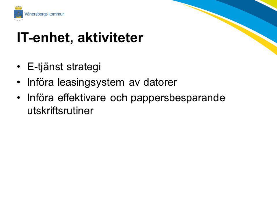 IT-enhet, aktiviteter E-tjänst strategi