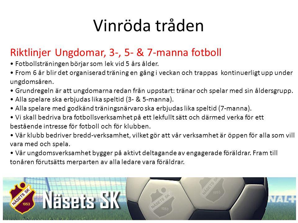 Riktlinjer Ungdomar, 3-, 5- & 7-manna fotboll
