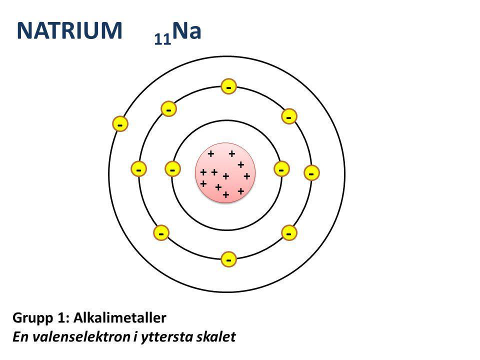 NATRIUM 11Na + - Grupp 1: Alkalimetaller En valenselektron i yttersta skalet
