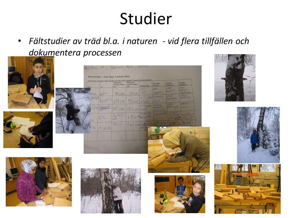 Studier Fältstudier av träd bl.a. i naturen - vid flera tillfällen och dokumentera processen