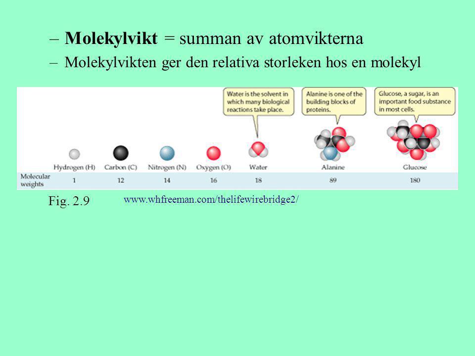 Molekylvikt = summan av atomvikterna