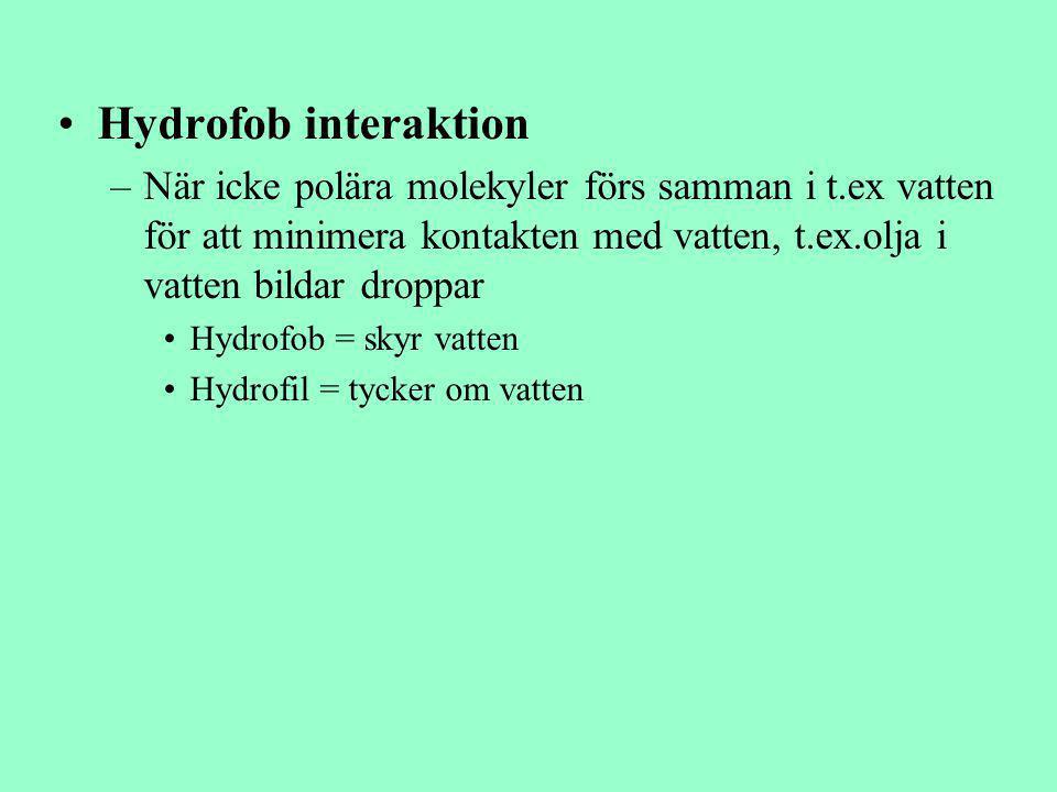 Hydrofob interaktion När icke polära molekyler förs samman i t.ex vatten för att minimera kontakten med vatten, t.ex.olja i vatten bildar droppar.