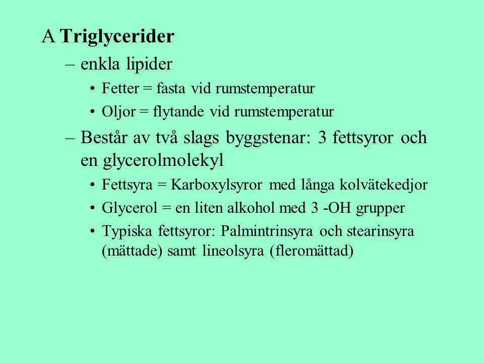 Triglycerider enkla lipider