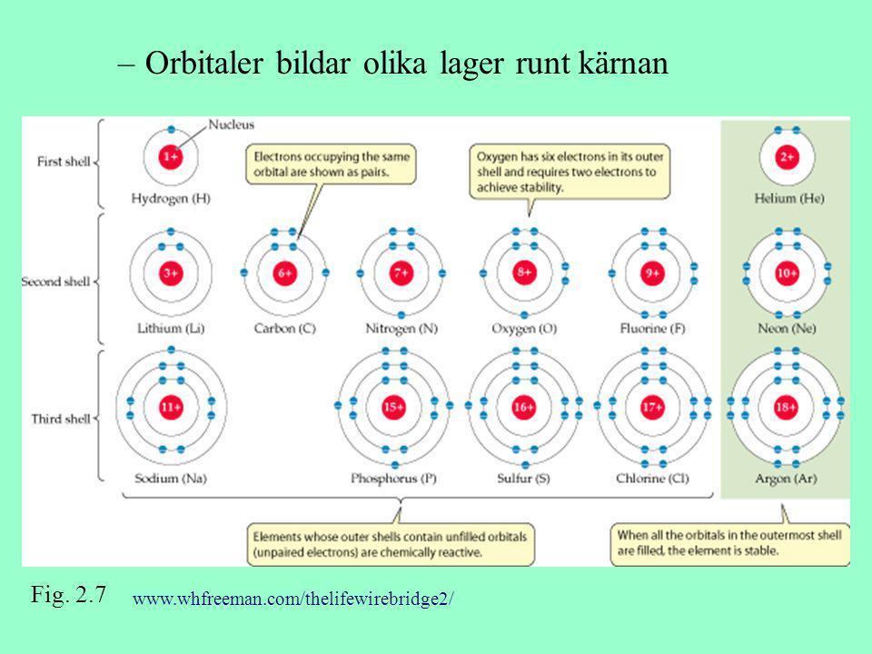 Orbitaler bildar olika lager runt kärnan