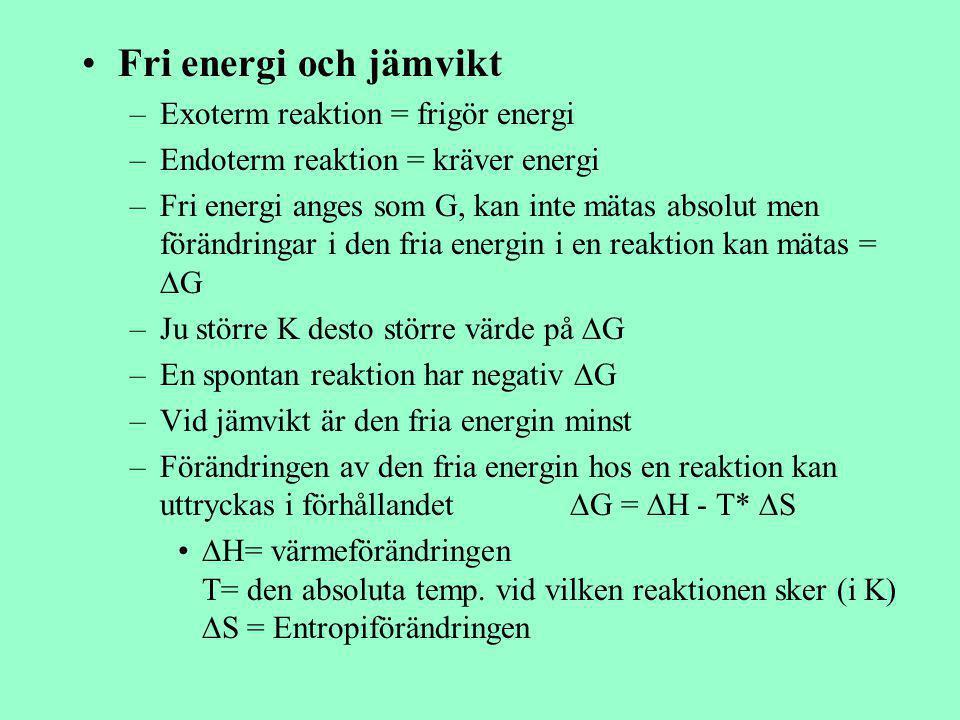 Fri energi och jämvikt Exoterm reaktion = frigör energi