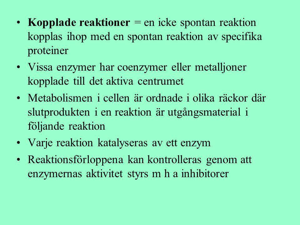 Kopplade reaktioner = en icke spontan reaktion kopplas ihop med en spontan reaktion av specifika proteiner