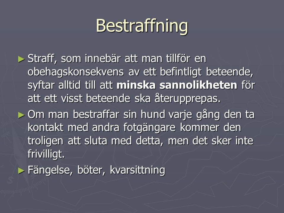 Bestraffning