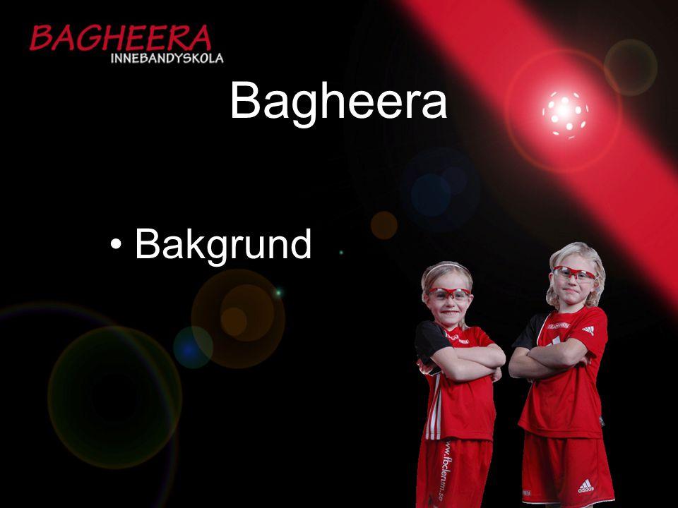 Bagheera Bakgrund