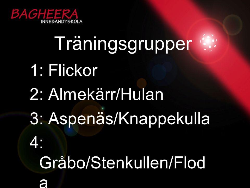 Träningsgrupper 1: Flickor 2: Almekärr/Hulan 3: Aspenäs/Knappekulla
