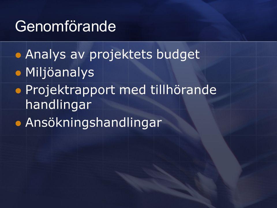 Genomförande Analys av projektets budget Miljöanalys