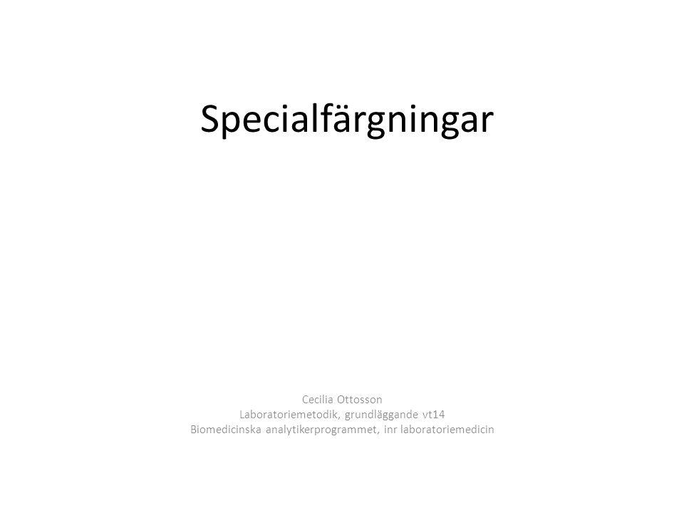 Specialfärgningar Cecilia Ottosson