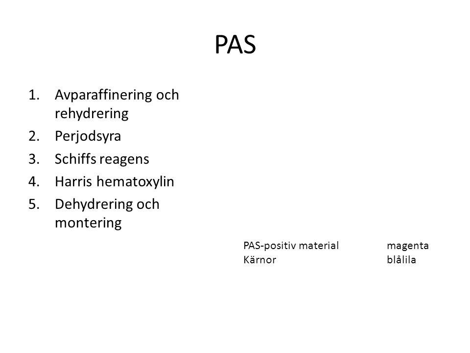 PAS Avparaffinering och rehydrering Perjodsyra Schiffs reagens