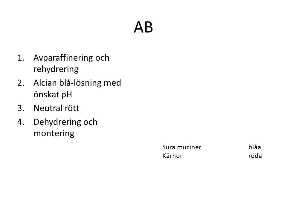AB Avparaffinering och rehydrering Alcian blå-lösning med önskat pH