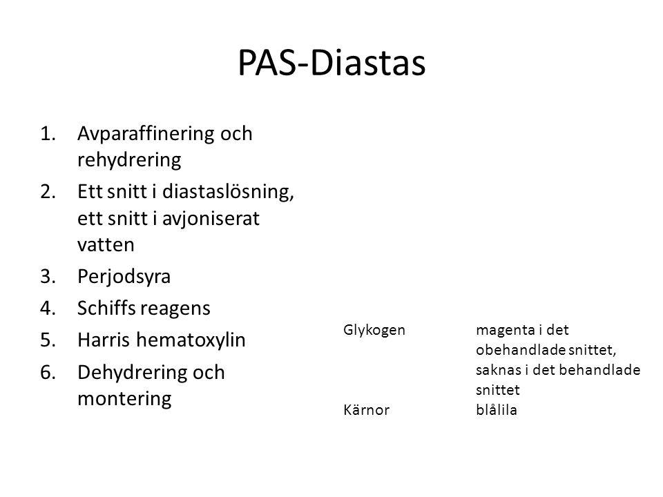 PAS-Diastas Avparaffinering och rehydrering