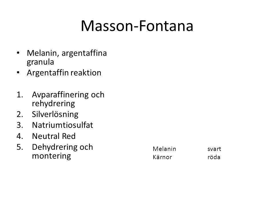 Masson-Fontana Melanin, argentaffina granula Argentaffin reaktion