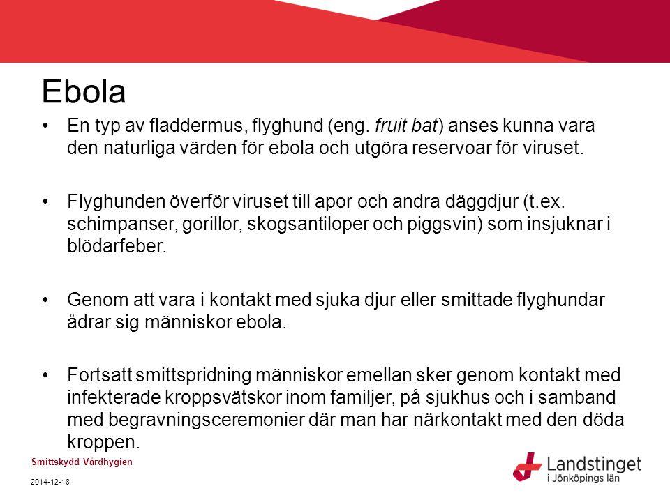 Ebola En typ av fladdermus, flyghund (eng. fruit bat) anses kunna vara den naturliga värden för ebola och utgöra reservoar för viruset.
