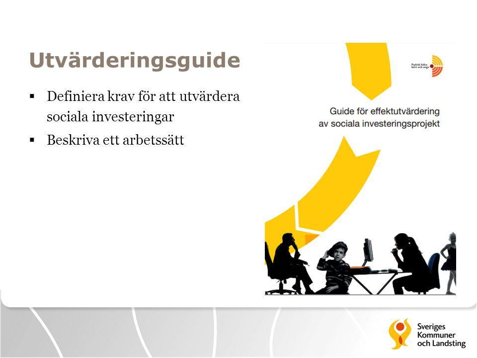 Utvärderingsguide Definiera krav för att utvärdera sociala investeringar Beskriva ett arbetssätt