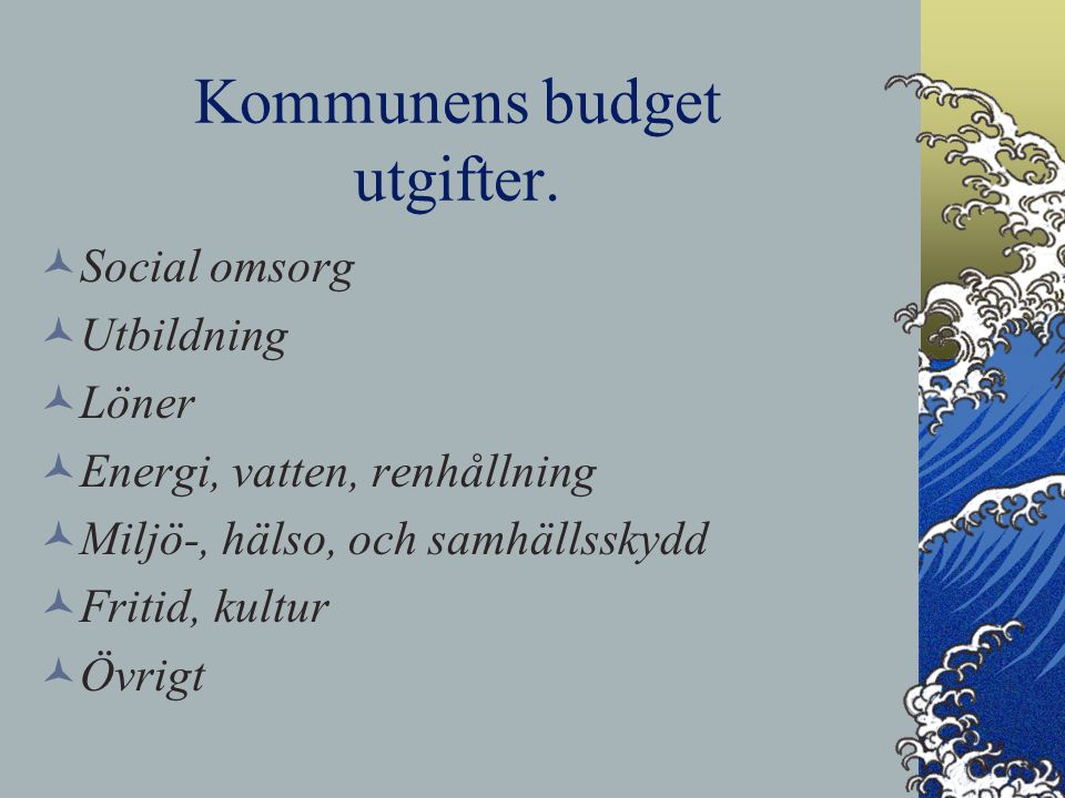 Kommunens budget utgifter.