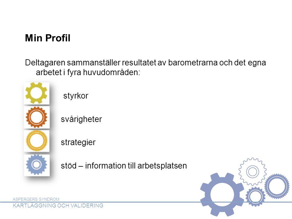 Min Profil Deltagaren sammanställer resultatet av barometrarna och det egna arbetet i fyra huvudområden: