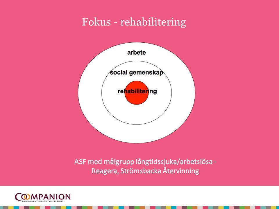 Fokus - rehabilitering