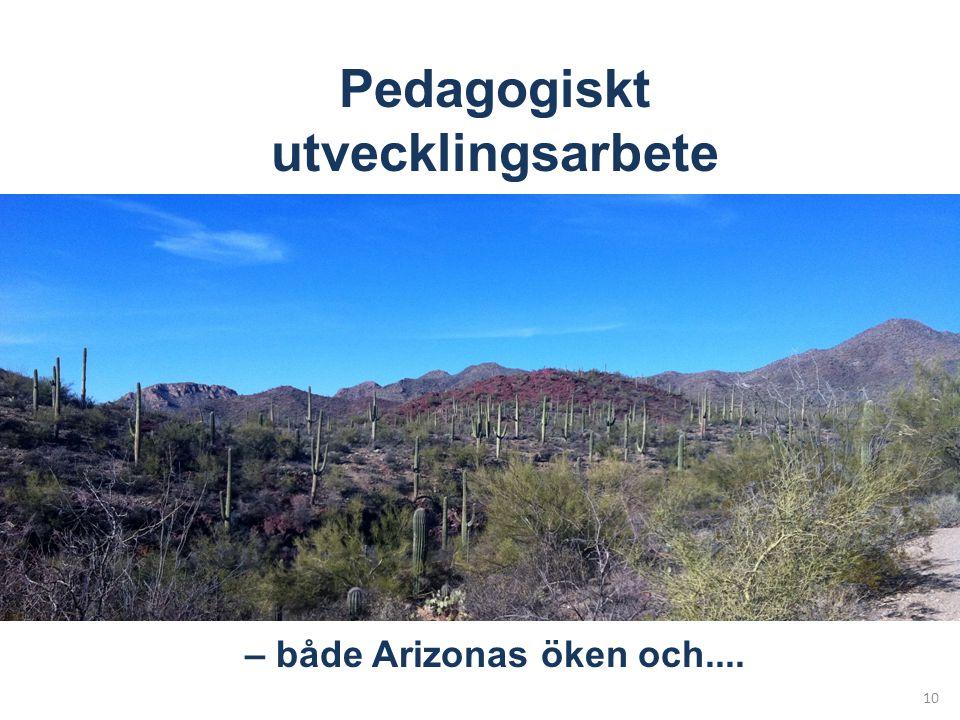 Pedagogiskt utvecklingsarbete – både Arizonas öken och....