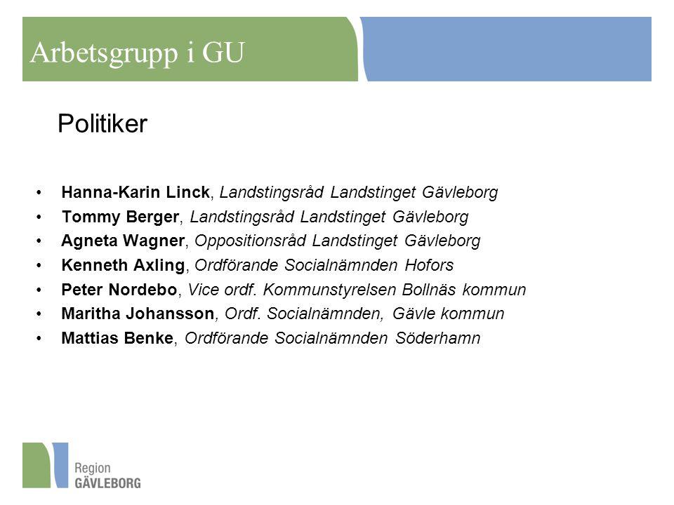 Arbetsgrupp i GU Politiker