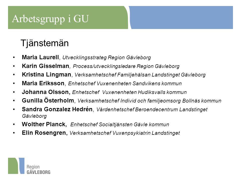 Arbetsgrupp i GU Tjänstemän
