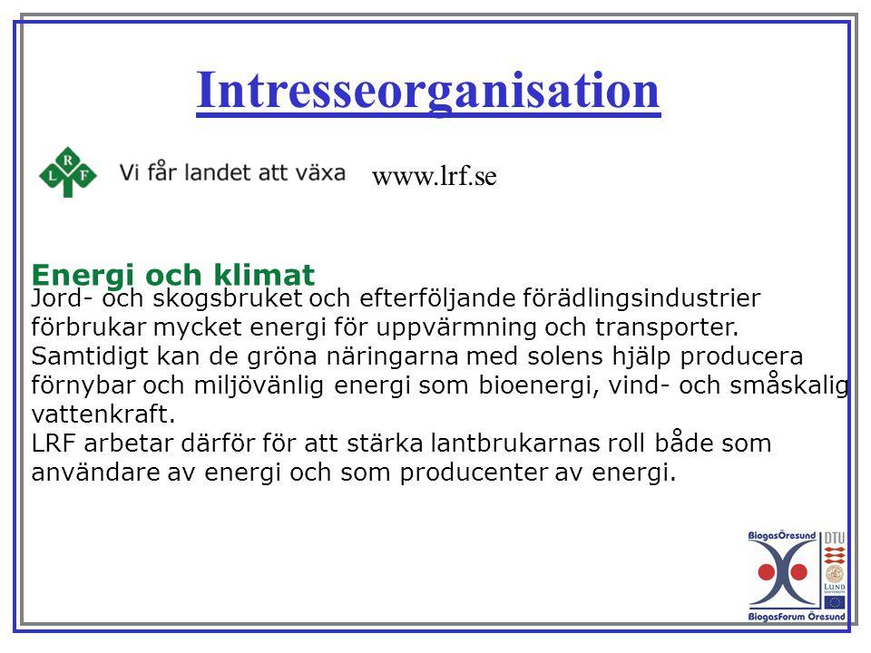 Intresseorganisation