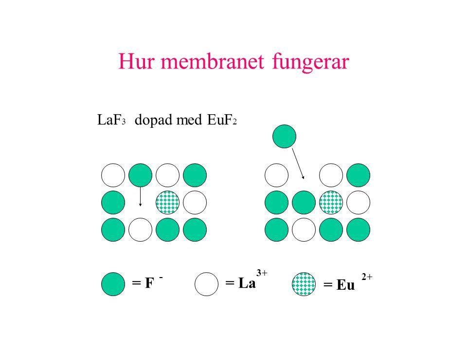 Hur membranet fungerar