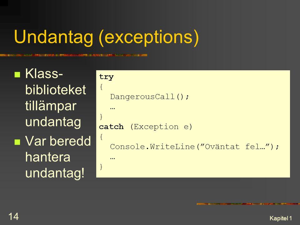 Undantag (exceptions)