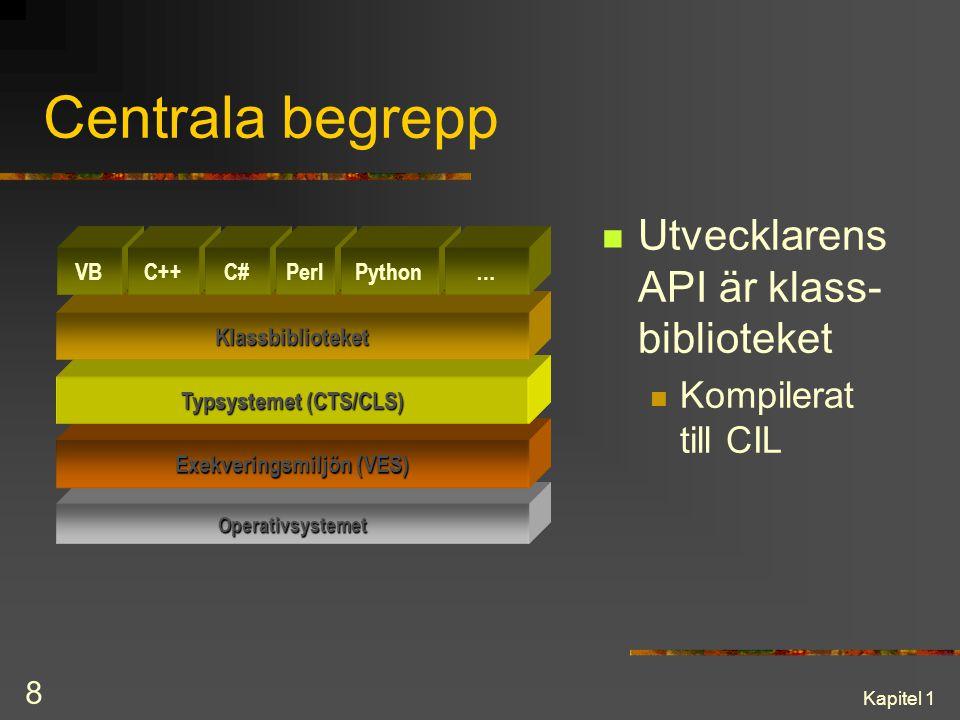 Typsystemet (CTS/CLS) Exekveringsmiljön (VES)