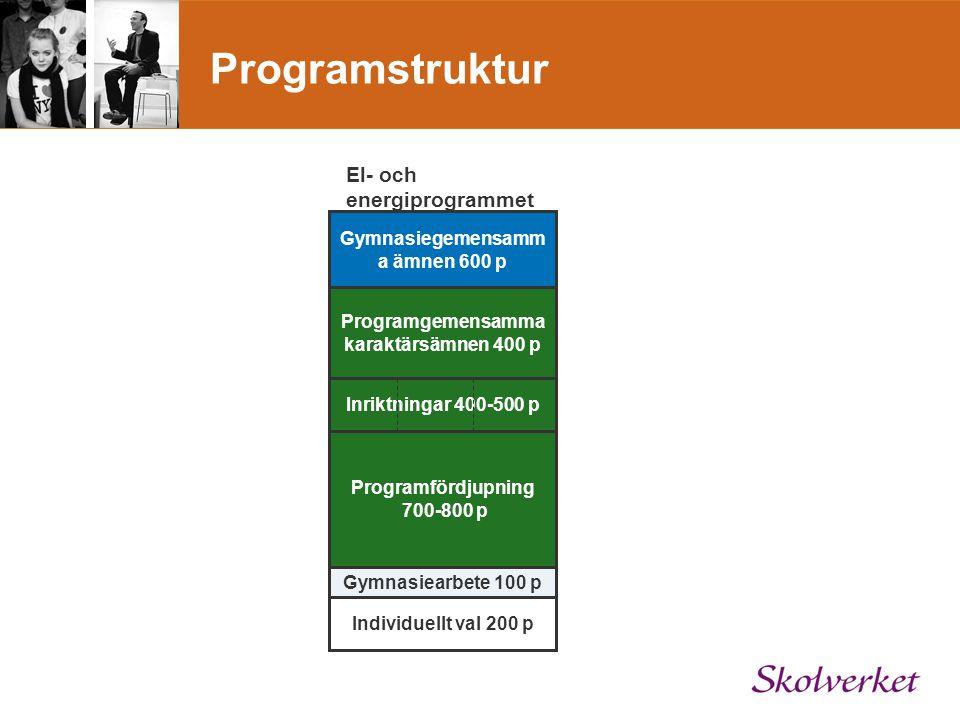 Programstruktur El- och energiprogrammet