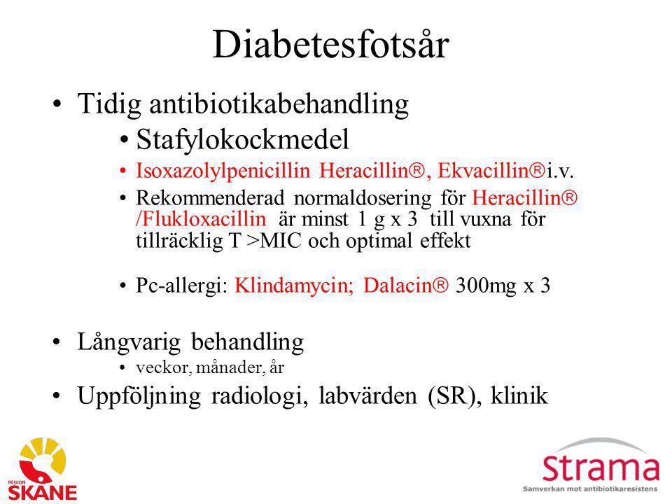 Diabetesfotsår Tidig antibiotikabehandling Stafylokockmedel