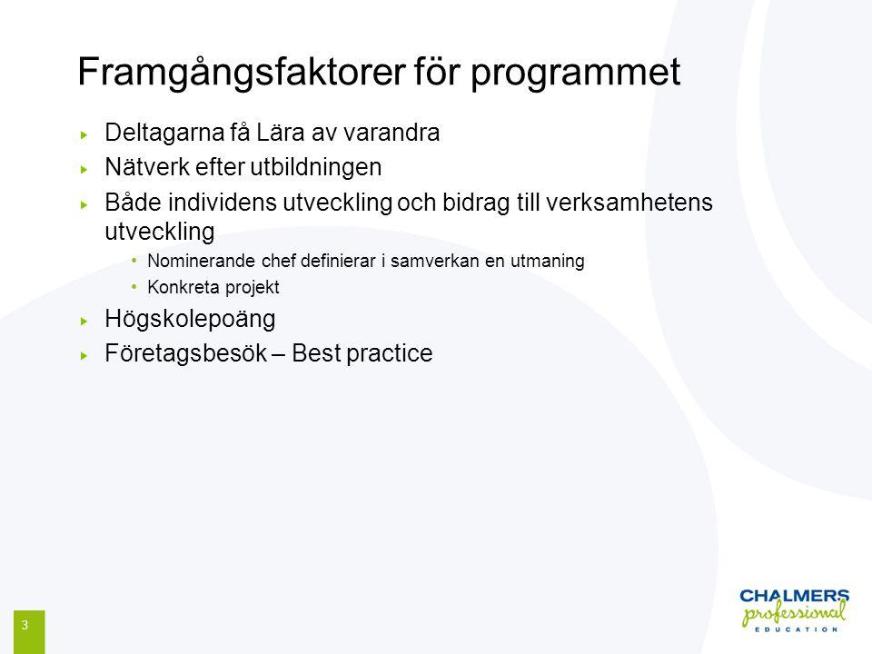 Framgångsfaktorer för programmet