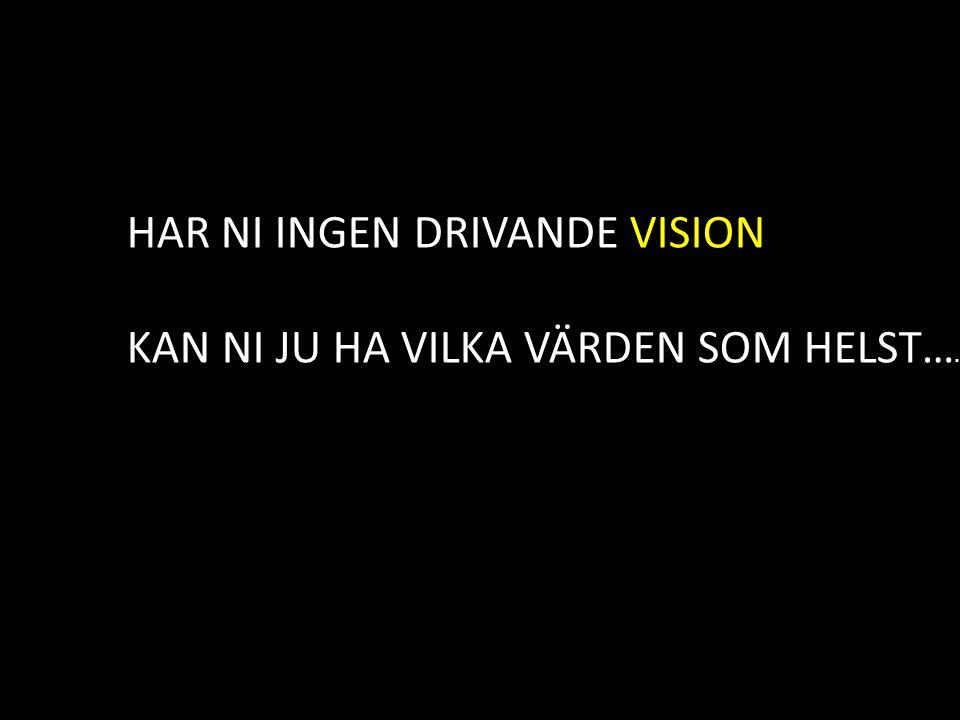 HAR NI INGEN DRIVANDE VISION
