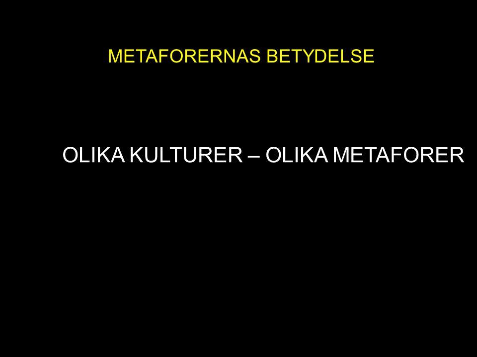 METAFORENS MAKT OLIKA KULTURER – OLIKA METAFORER
