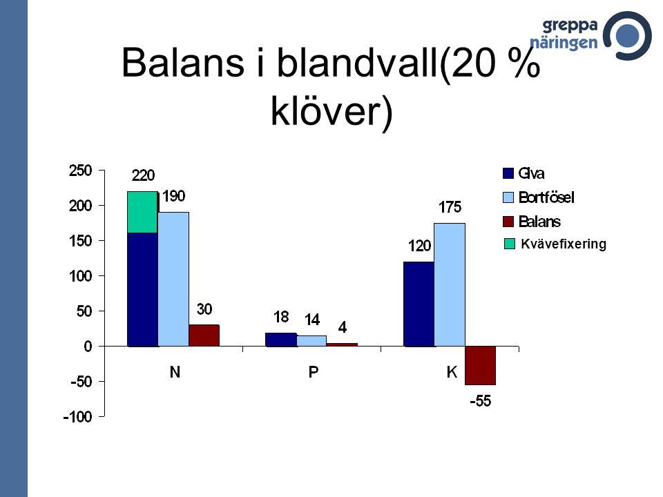 Balans i blandvall(20 % klöver)