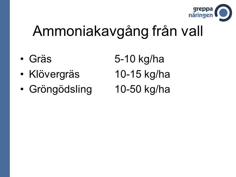Ammoniakavgång från vall