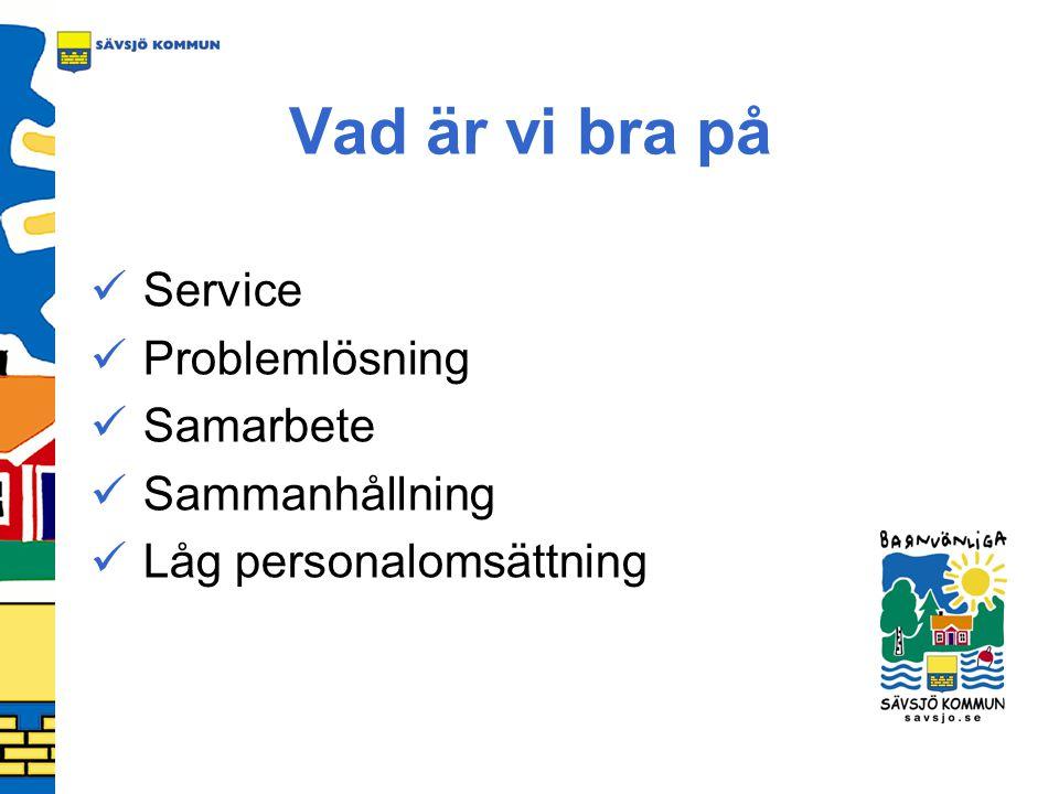Vad är vi bra på Service Problemlösning Samarbete Sammanhållning