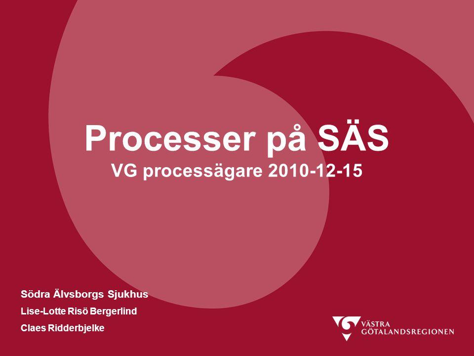 Processer på SÄS VG processägare 2010-12-15