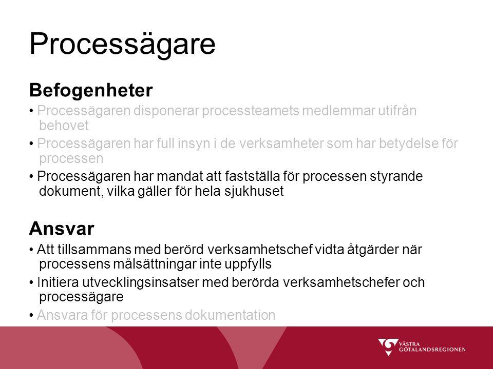Processägare Befogenheter Ansvar